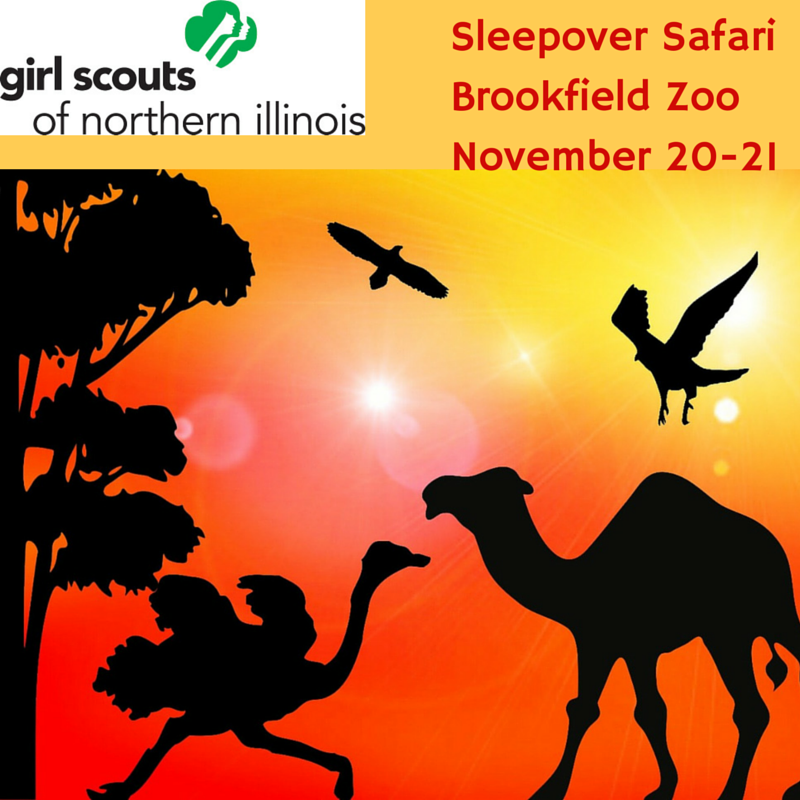Sleepover Safari Friday, November 20 - Saturday, November 21 7:15PM - 10AM (Overnight training not required) Daisy, Brownie, Junior, & Cadette A zoo is a zoo 24/7, and now she'll get a behind-the-scenes glimpse into what happens at night. She'll love this nocturnal adventure, complete with a craft activity, wild night hike, and ice cream social. Registration Opens Soon!