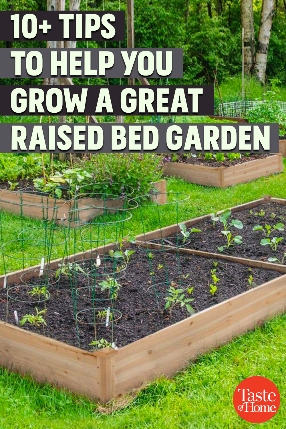 Tips And Tools To Help You Grow A Great Raised Bed Garden