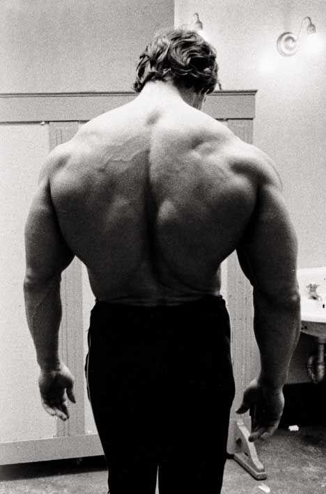 Http Www Trimmedandtoned Com Wp Content Uploads 2013 12 Arnold Schwarzen Arnold Schwarzenegger Bodybuilding Schwarzenegger Bodybuilding Arnold Schwarzenegger