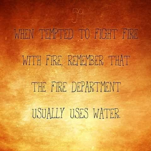 365 Quotes When Tempted To Fight Fire With Fire Remember That The