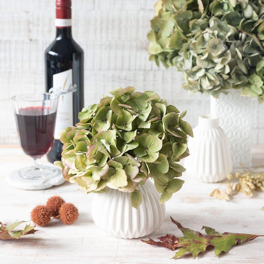 Hortensien sind nicht nur ein Blickfang, wenn sie in voller Blüte stehen. Getrocknet ergeben sie eine herbstliche Tischdeko, die nicht nur toll aussieht, sondern auch noch nachhaltig ist. #blanchetinspiriert #unddazublanchet #weingenuss #weinerlebnisse #zeitfürfreunde #diy #inspiration#doityourself #freunde #dinner #diyideen #weißwein #kreativ #handgemacht #zuvi #herbstlichetischdeko