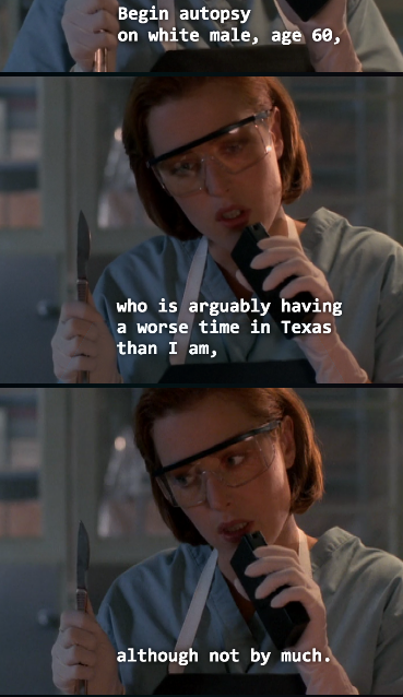 Tx X Files X Files Funny X Files Scully