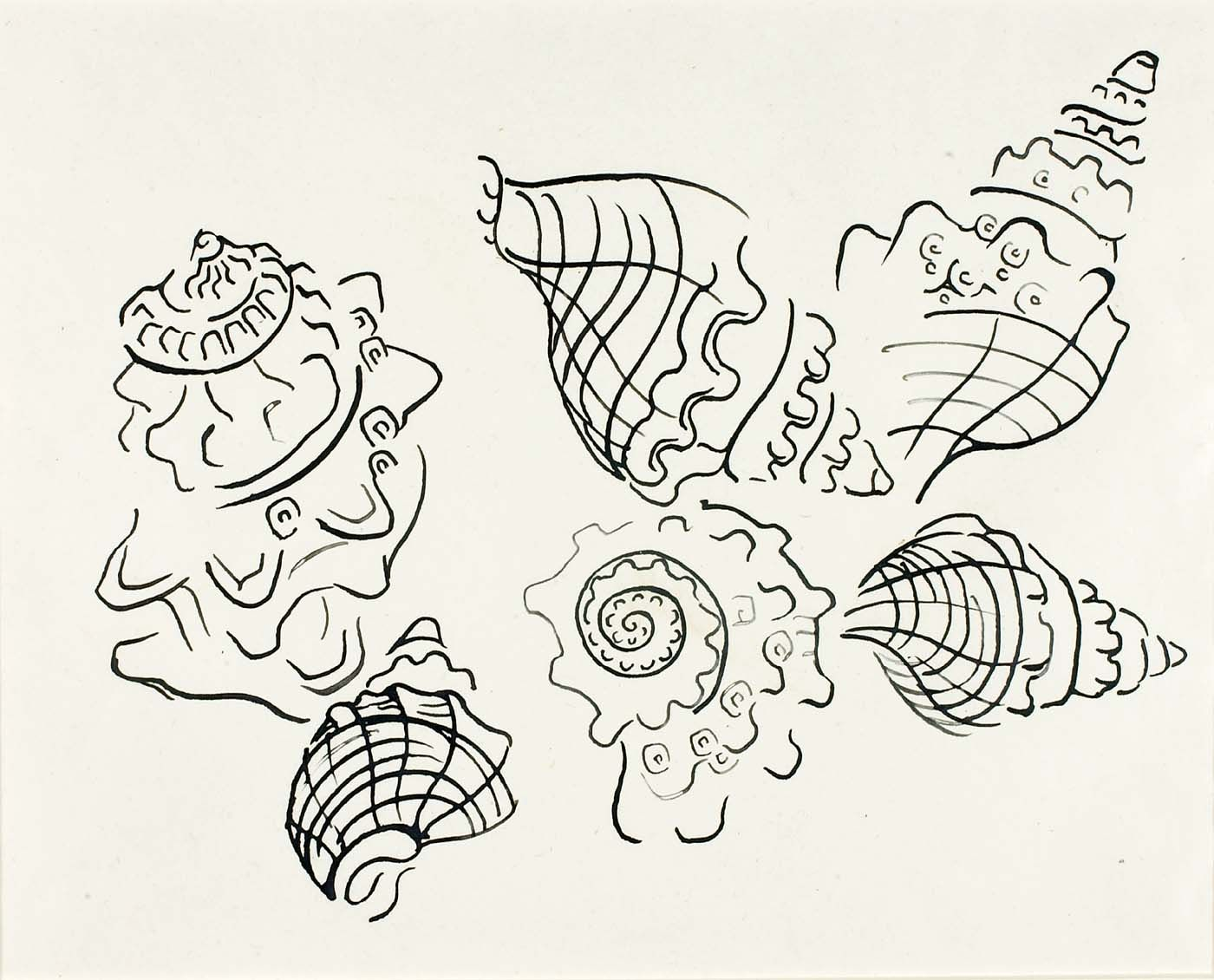 Walter Anderson Shells lovely drawing with discontinuous