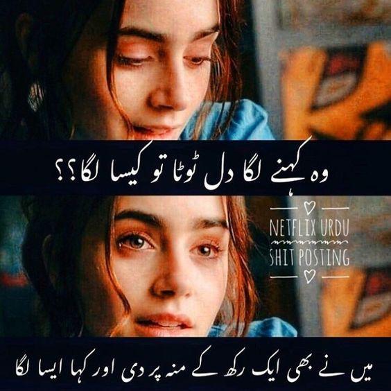 Funny Attitude Quotes English Funny Attitude Quotes Funny Attitude Quotes Urdu Funny Quotes Attitude Quotes