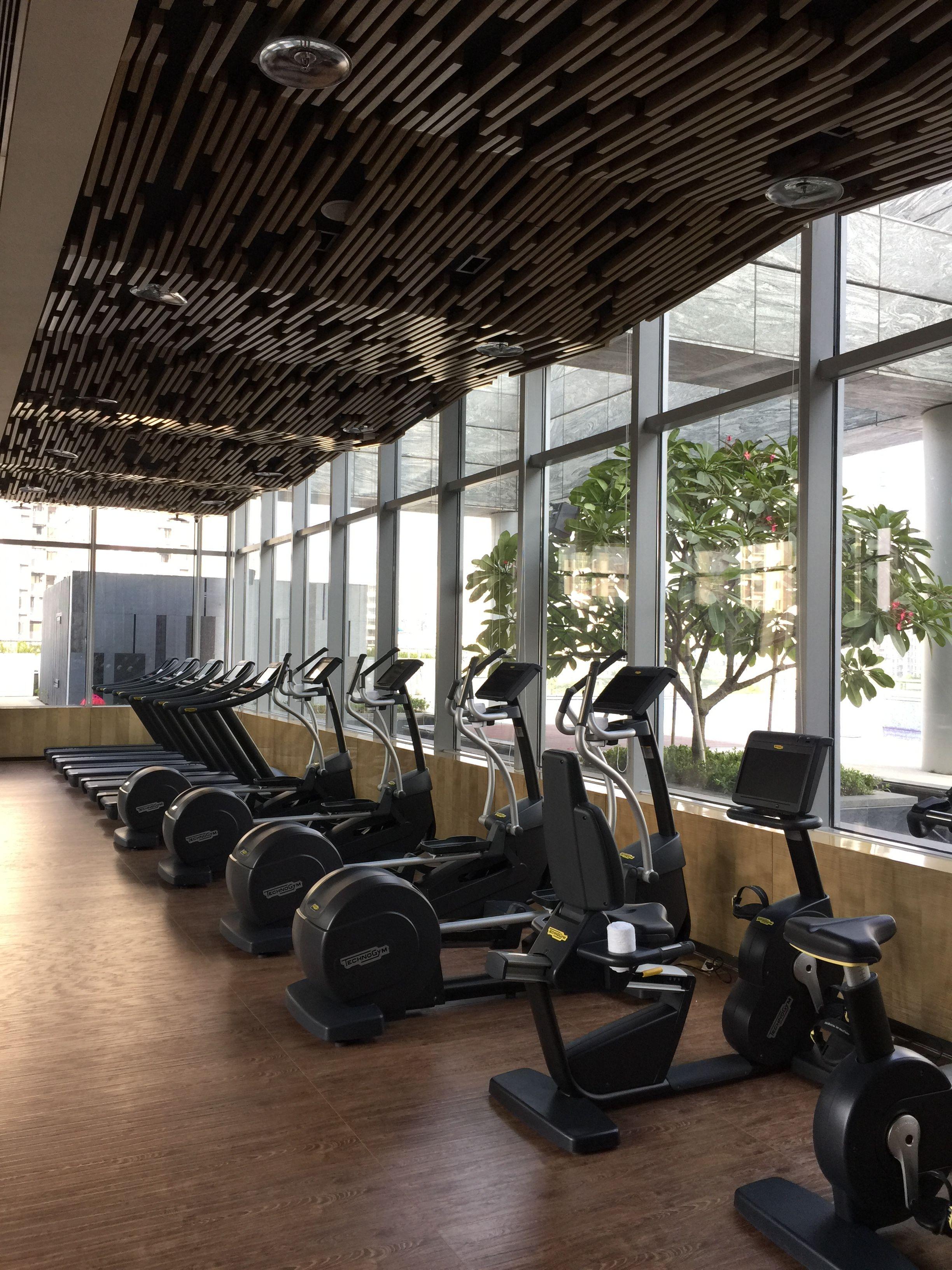 Fitness Gym Gym Workouts Gym Pool Area