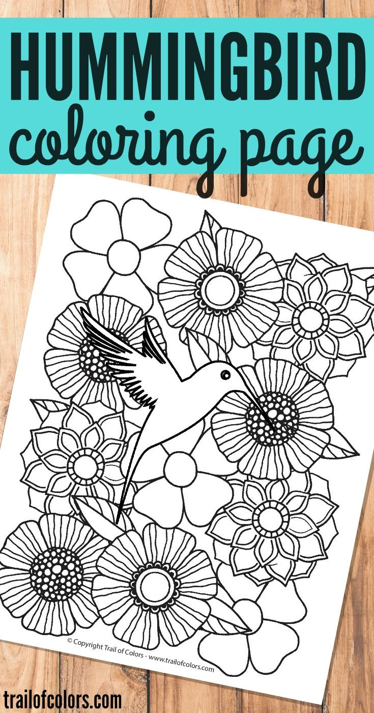 Bird Coloring Page for Grown Ups