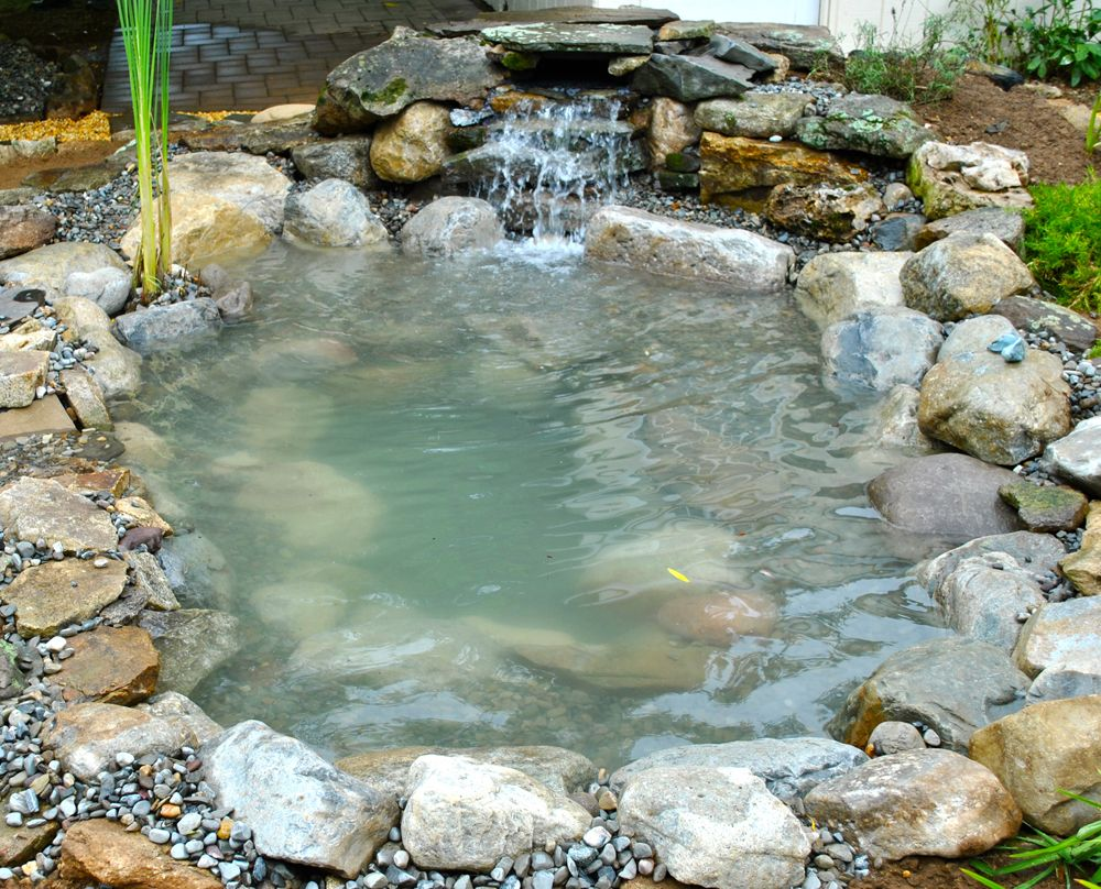 Small backyard ponds and waterfalls summit nj 07901 koi for Garden pond installers