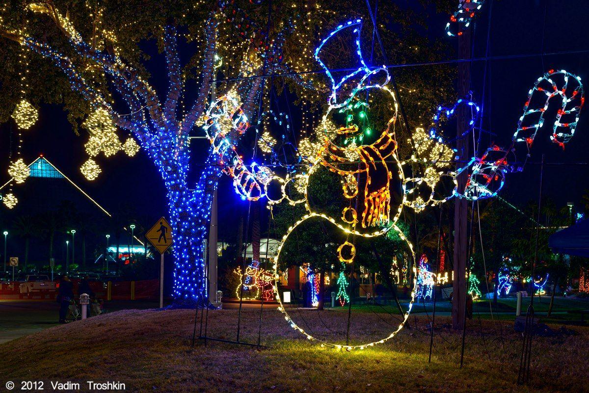 Galveston Com Moody Gardens Best Christmas Lights Christmas Lights Moody Gardens