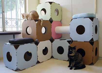 guide11-cattystacks