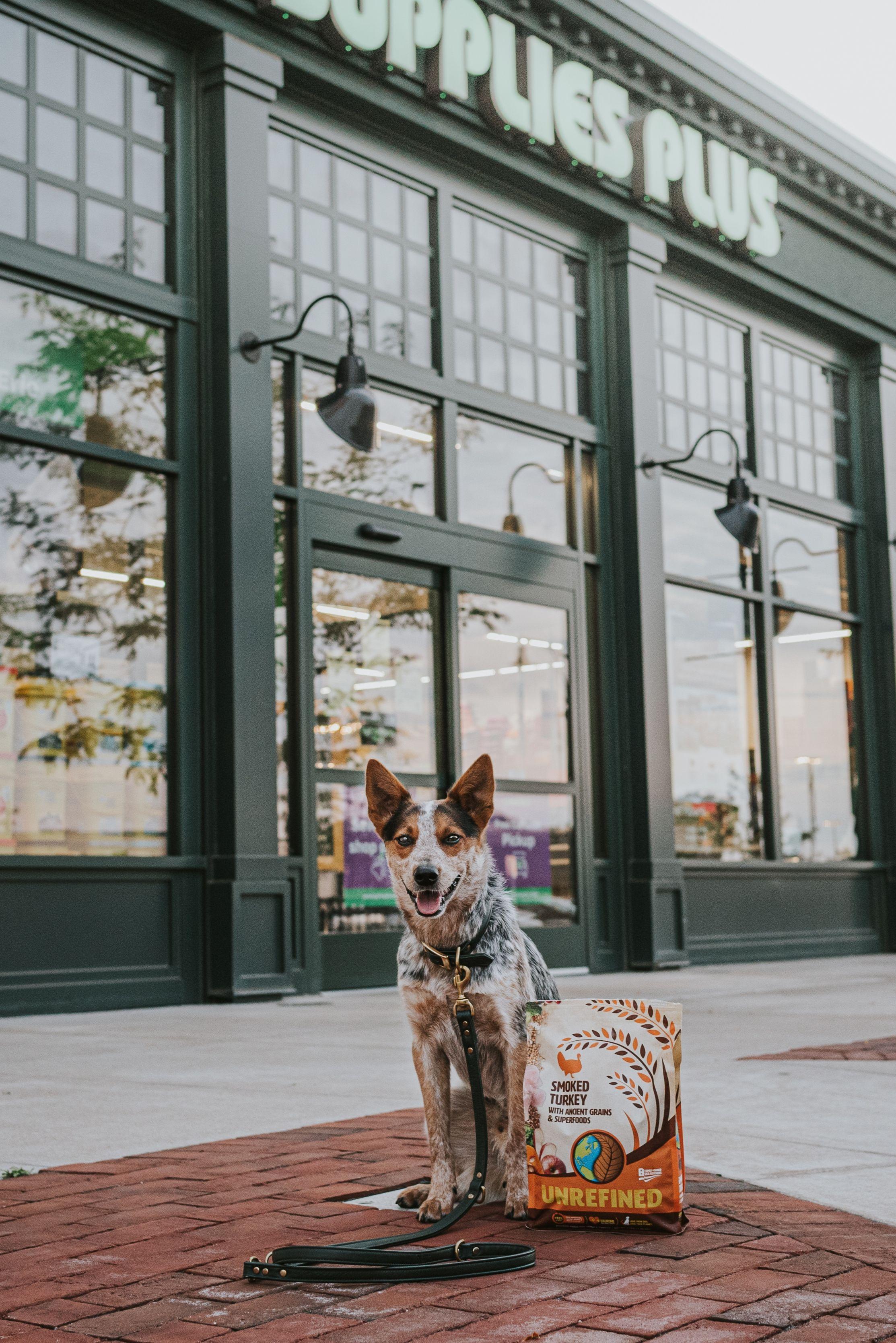 Pet Supplies Plus Erie, PA in 2020 Pet supplies plus