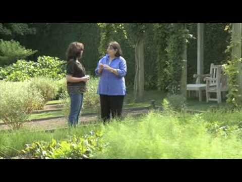 Ina garten youtube ina walks through her garden and describes what she plants house of - Ina garten garden ...