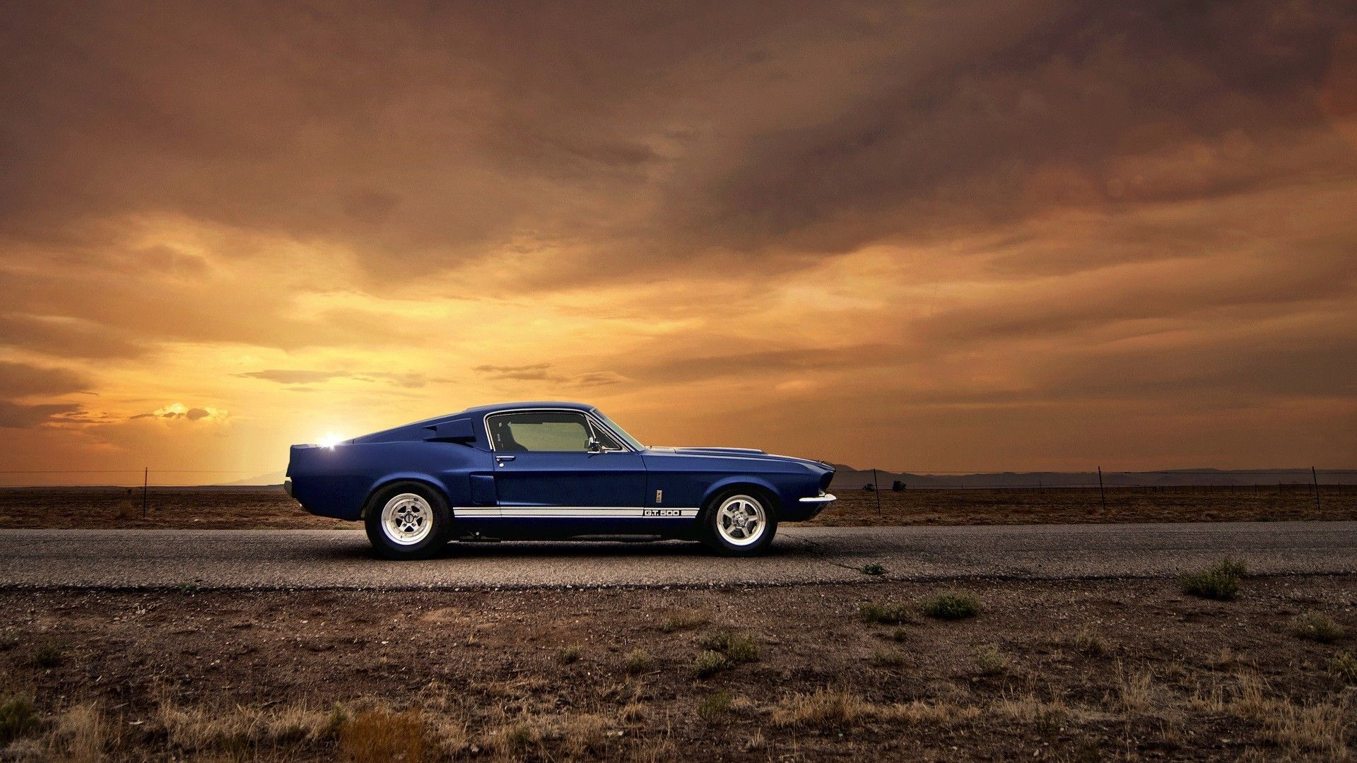 American Muscle Cars Mustang Muscle Cars Mustang Muscle Cars