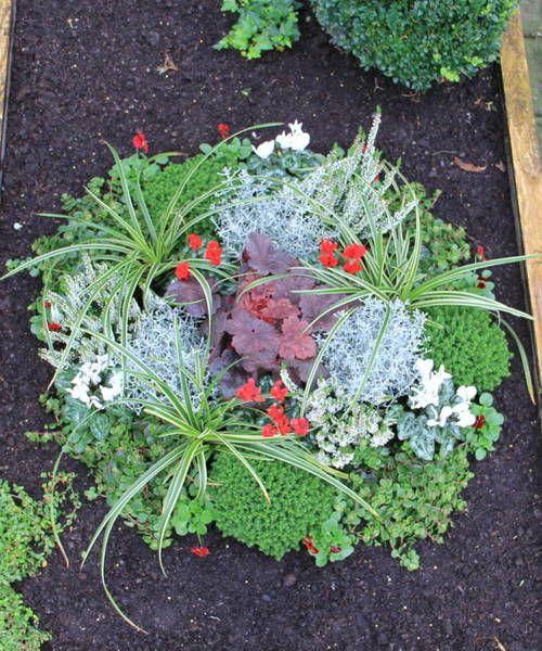 Mustergraber Grabbepflanzung Pflanzen Bepflanzung