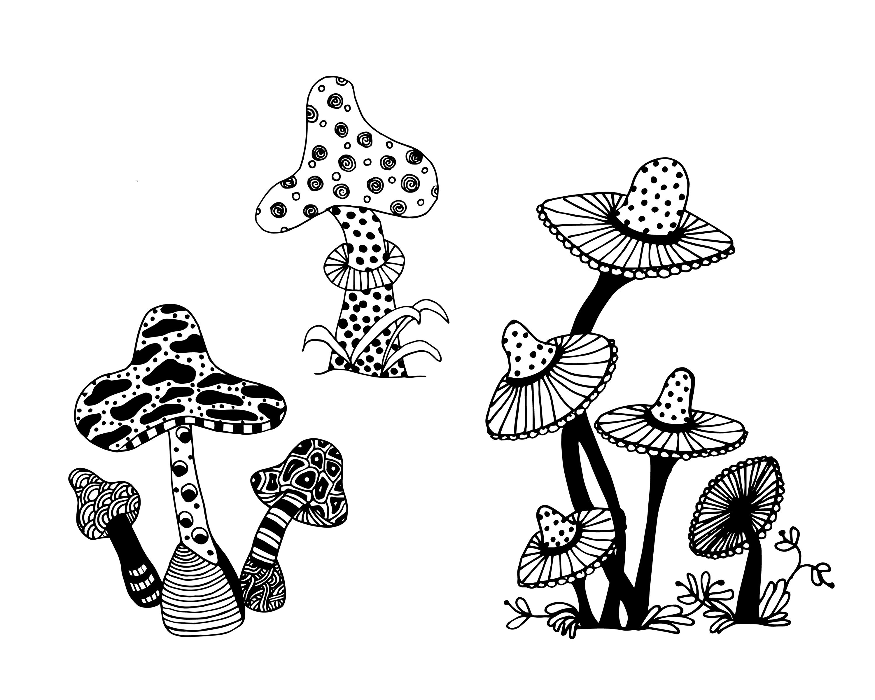 FREE Mushrooms Adult Coloring Page | ✐Adult Colouring~Mushrooms ...