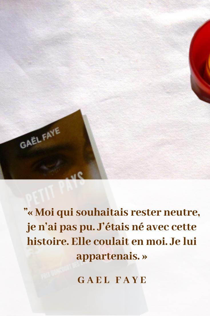 Citation Tirée Du Livre De Gaël Faye, Petit Pays | Gael Faye, Citation,  Livre