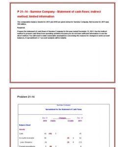 P 21 14 Surmise Company Statement Of Cash Flows Indirect