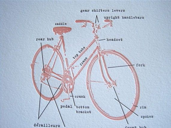 Pin By Hector Merienda On Bicycles Bike Shop Bicycle Bike Culture