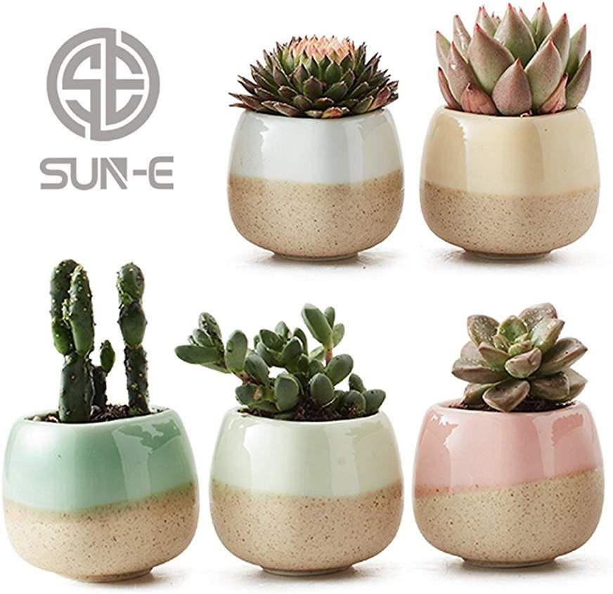 Amazon Com 4 Inch Succulent Pots Cactus Plant Pots Succulent Pots Flower Pots