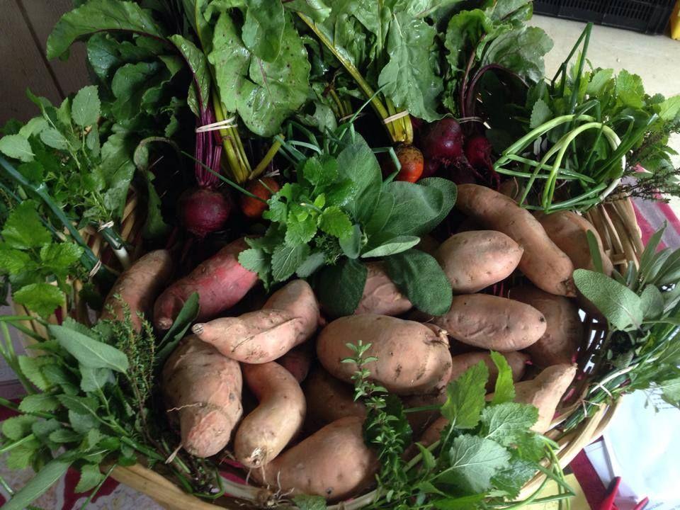 Loockerman way farmers market dover de