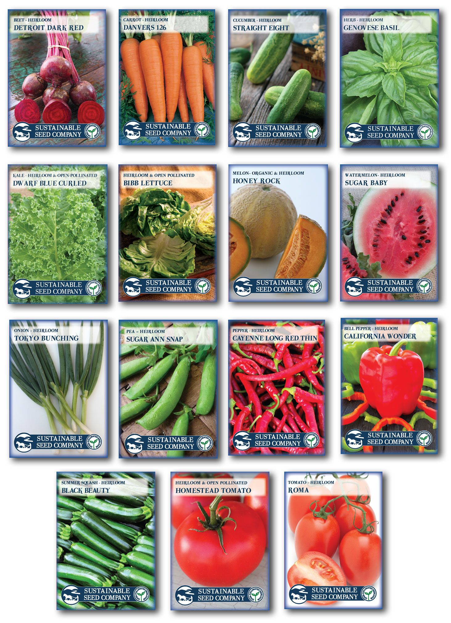 Organic Seeds Non GMO Heirloom Herb Seed  Garden Collection 6 Top Seeds