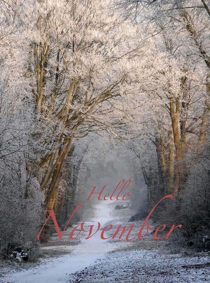 Hello November Hello November Welcome November Hello July