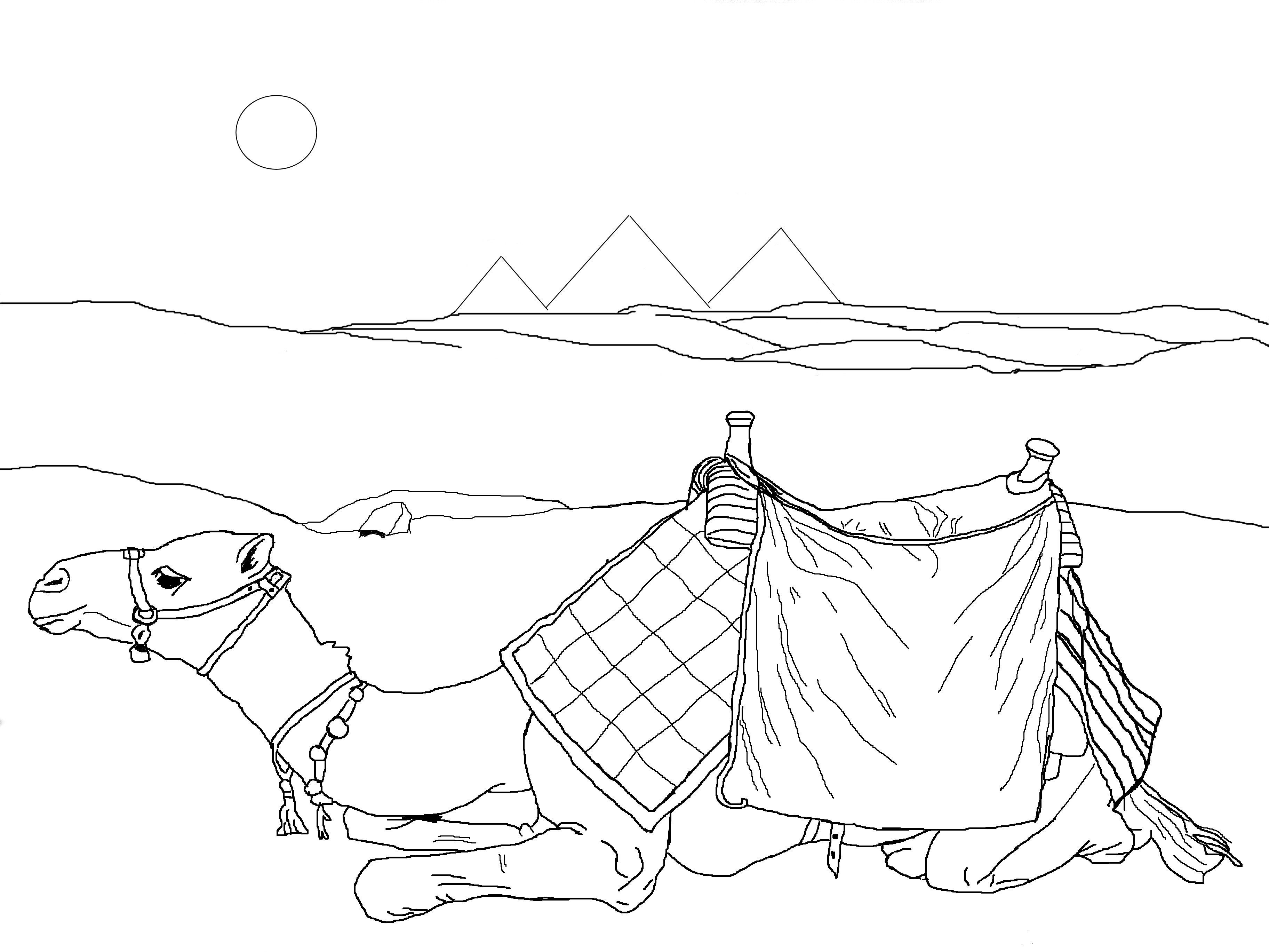 Coloring Page Egypt Animal Coloring Pages Desert Colors