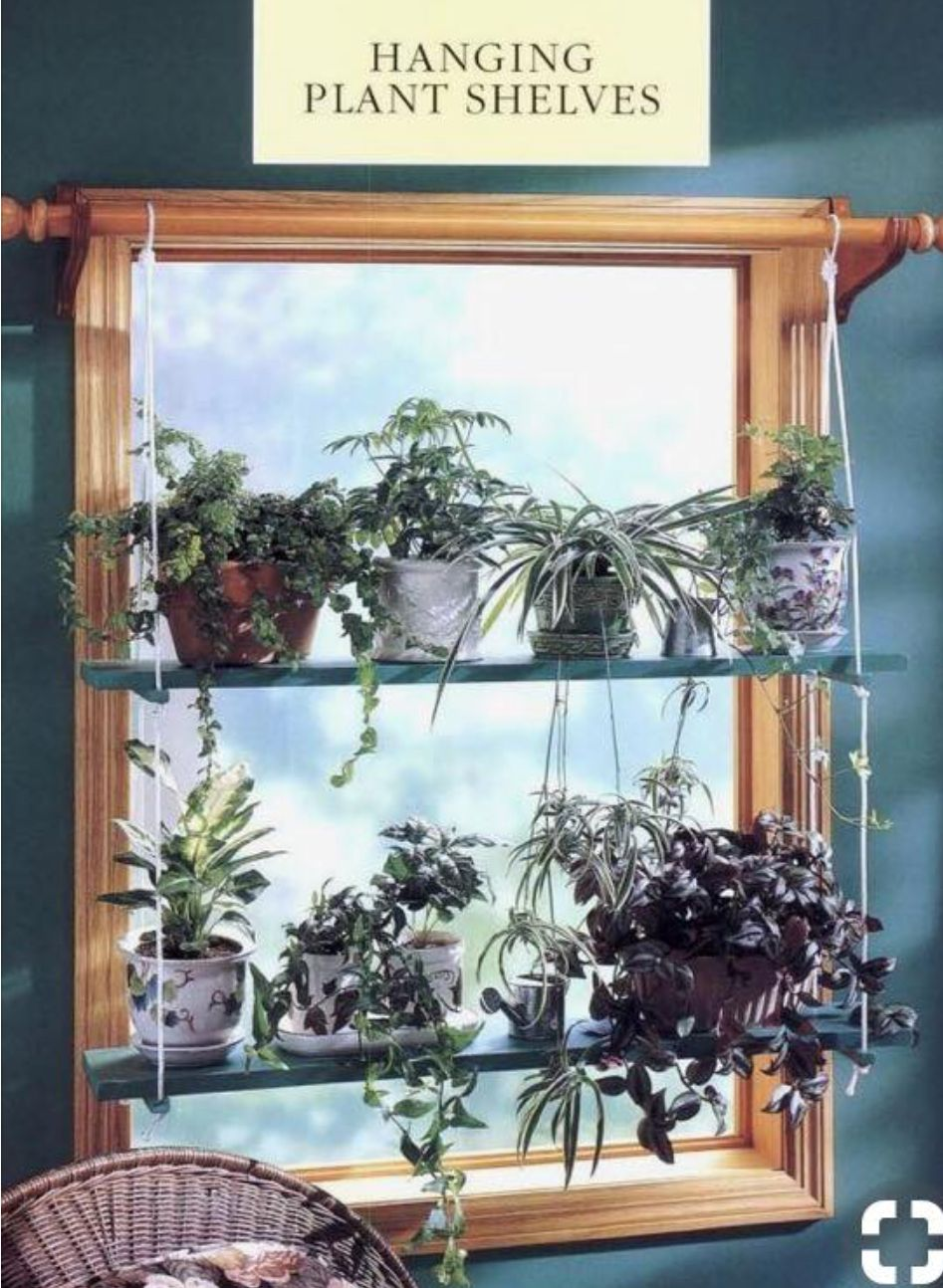 Hanging Plant Shelves Kitchen Window Treatments Diy Window