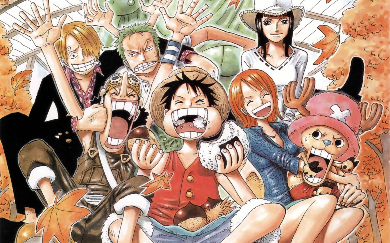 One Piece おしゃれまとめの人気アイデア Pinterest Corumi Animes