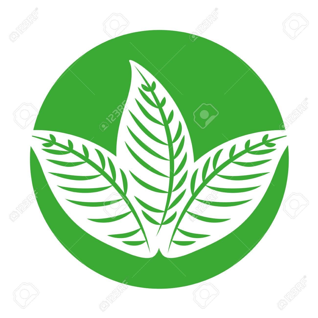 Tropical Leaf Summer Icon Vector Illustration Design Affiliate Summer Leaf Tropical Icon Vector Illustration Design Illustration Design Sketch Book Find the perfect tropical leaf icon stock illustrations from getty images. pinterest
