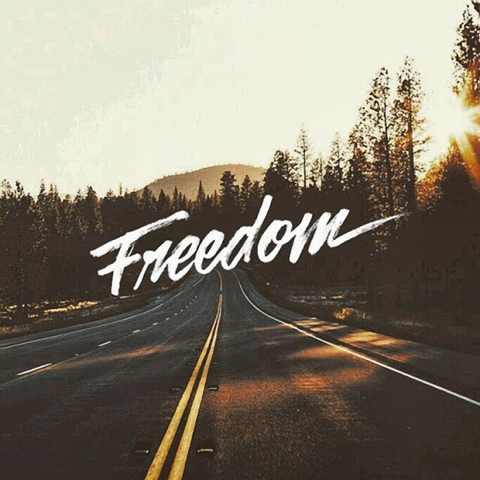 Freedom Font Founding Fathers #freedomfurniture Freedom font #freedom , freiheitsschrift , police de la liberté , fuente de libertad , freedom photography, freedom artwork, freedom quotes, freedom gundam, freedom aesthetic, freedom tattoo, freedom ilustration, freedom pictures, freedom symbol, freedom drawing, freedom fotografia, freedom design, freedom wallpaper, freedom logo, freedom lifestyle, freedom nature, financial freedom, freedom furniture, freedom in christ, freedom poster, freedo