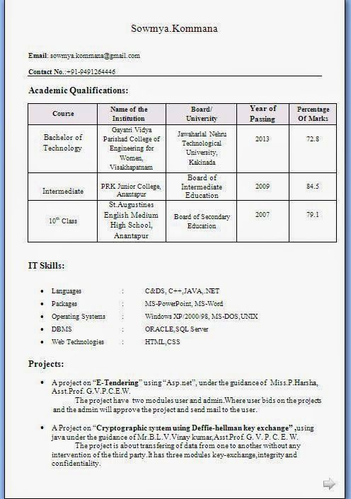 an example of a cv Excellent Curriculum Vitae / Resume / CV Format