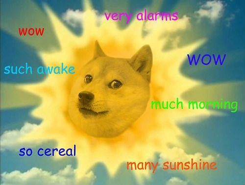 Dog Face Meme Wow Dog Meme Art Wow Dog Meme