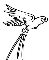 Drawing Simple Bird Fly Clipart Best Parrot Drawing Bird Coloring Pages Animal Coloring Pages