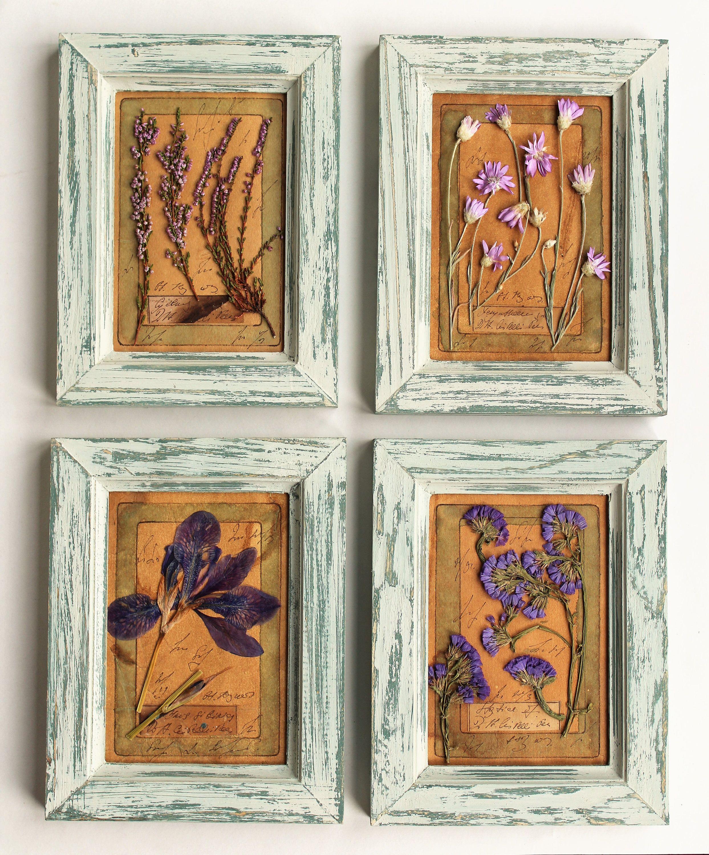 Set of 4 vintage herbarium, pressed flowers framed, Pressed Flower ...