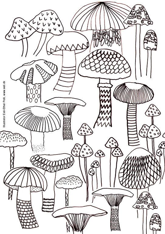 mushroom coloring pages mushroom coloring sheet A4 printable instant download color page  mushroom coloring pages