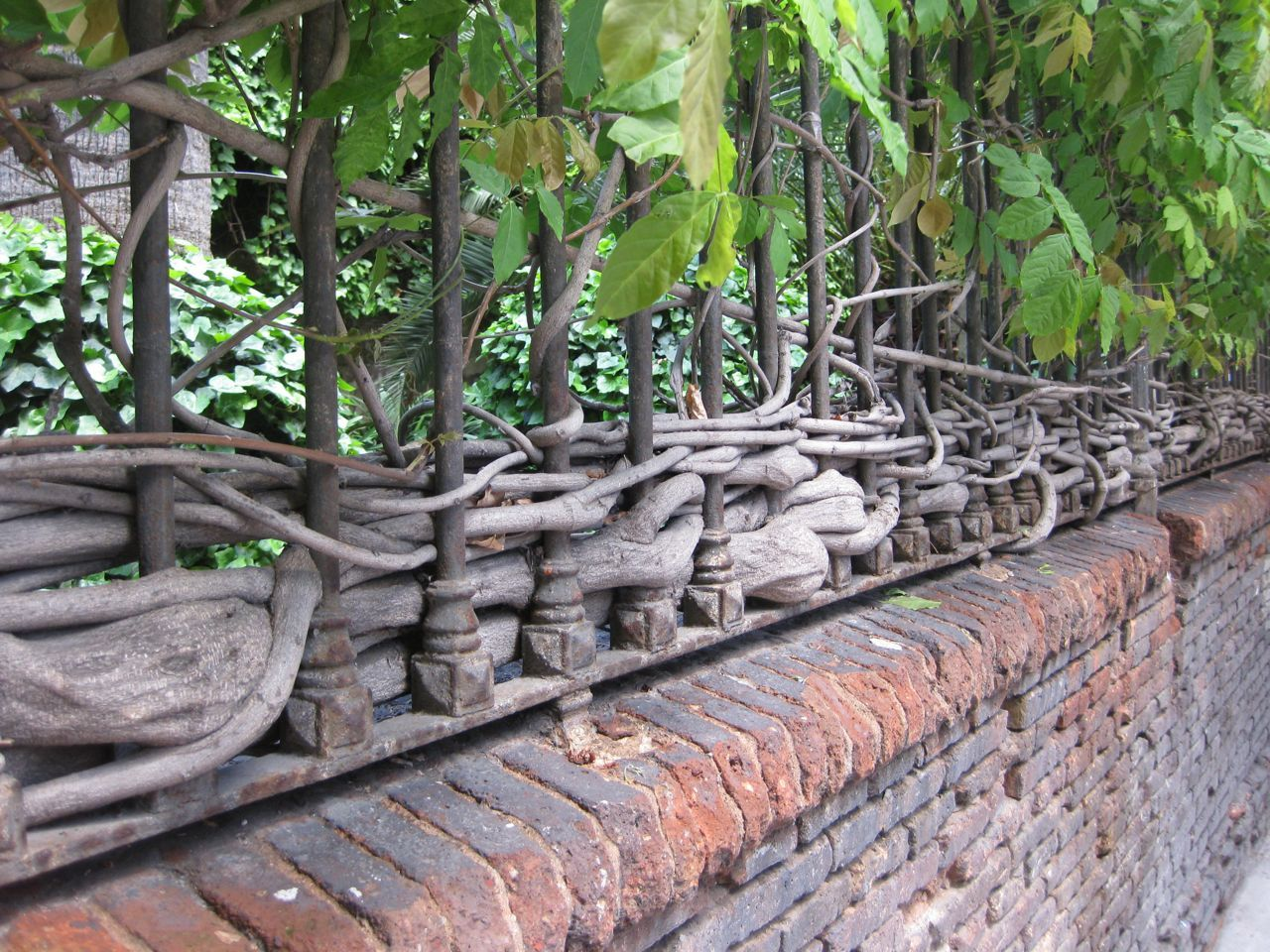 So Long Summer With Images Secret Life Of Plants Iron Fence