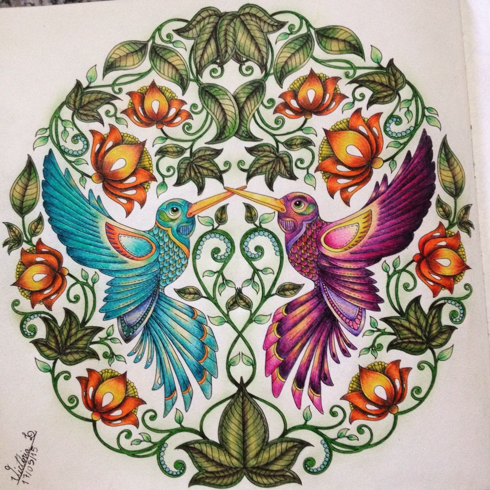 Desenho Do Beija Flor No Livro Jardim Secreto Adult ColoringColouringColoring BooksJohanna Basford Secret GardenPencil ArtHummingbirdsColored