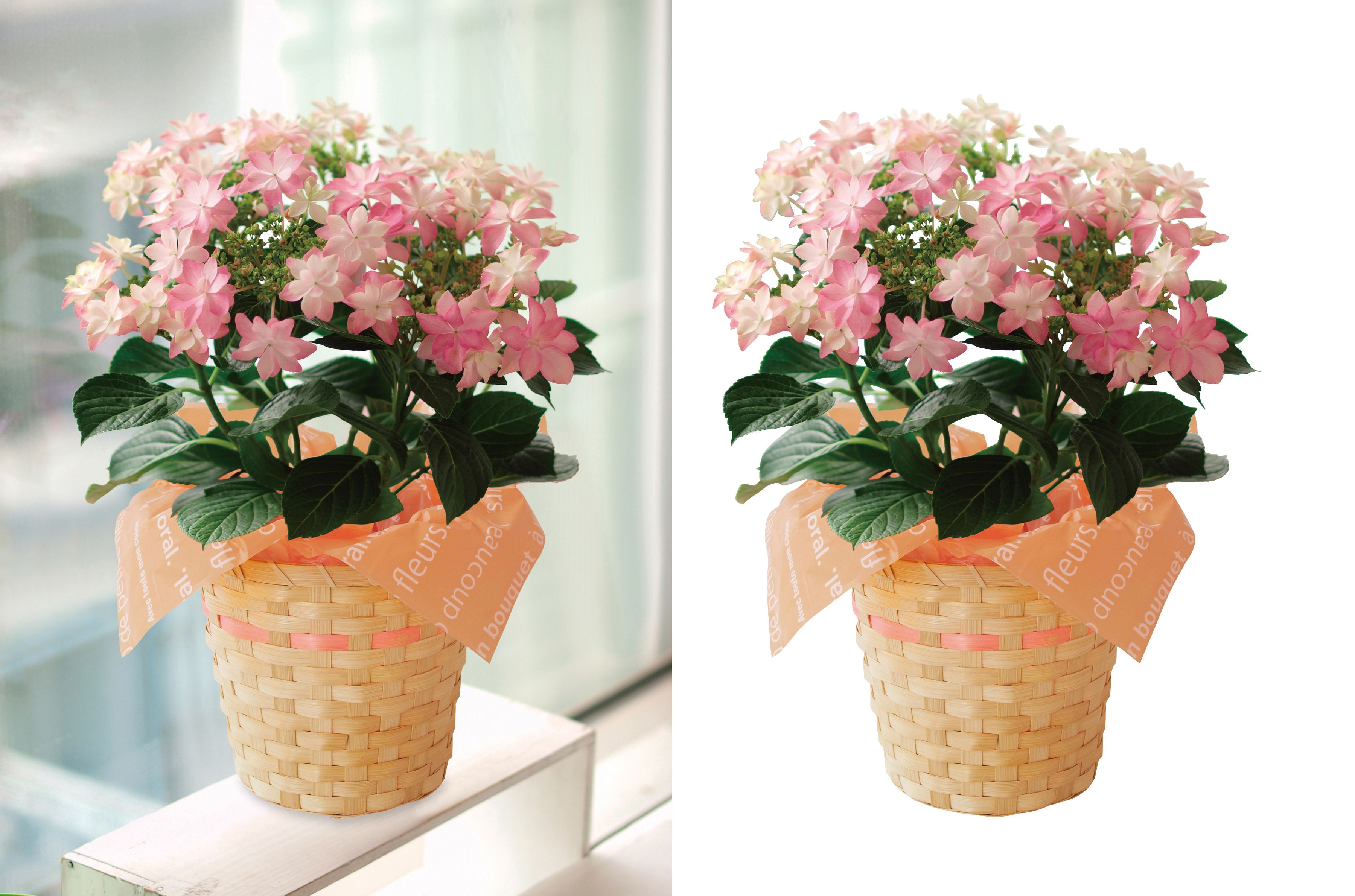 This clipping path tutorial will show you how to
