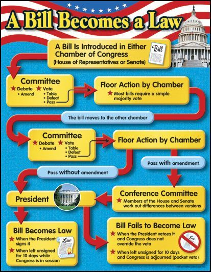 Bill Becomes a Law Chart | Teaching government, Teaching ...