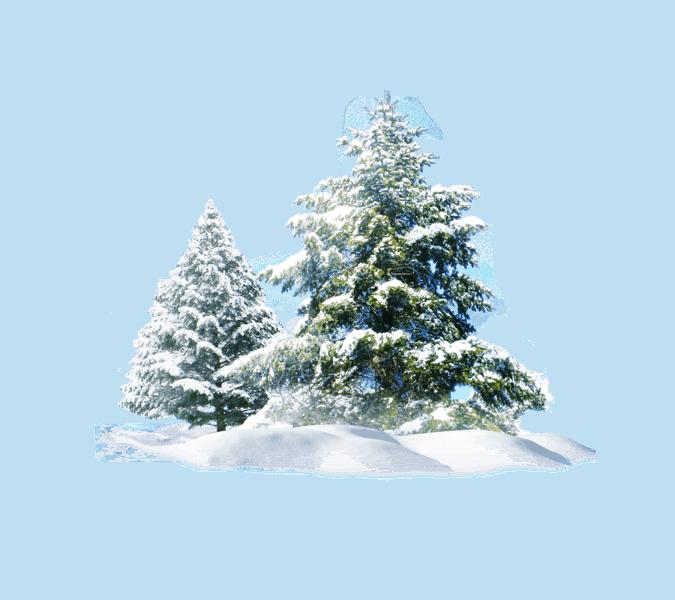 A Winter Solstice Story The Yule Fairies Fairy Gardening Australia Snow Tree Christmas Tree Clipart Christmas Snow