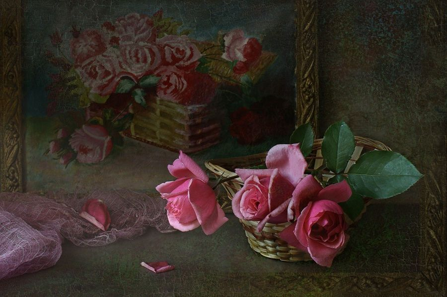 Rose. by Elena Kolesneva on 500px