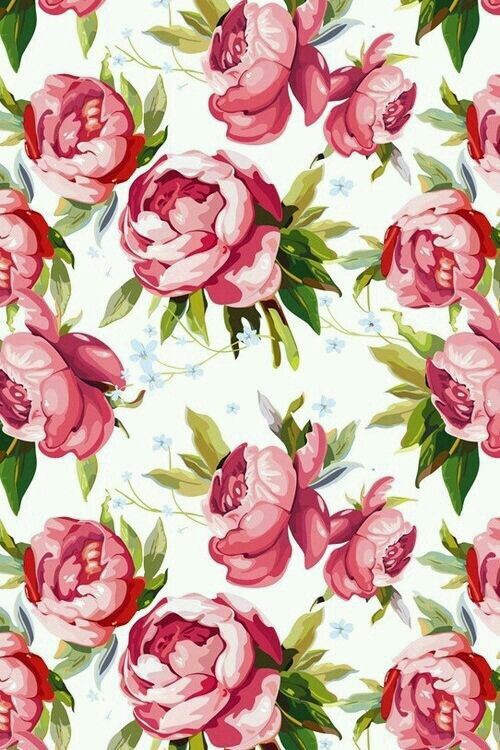 Pin By Tew Witty On Wallpaper Flowers