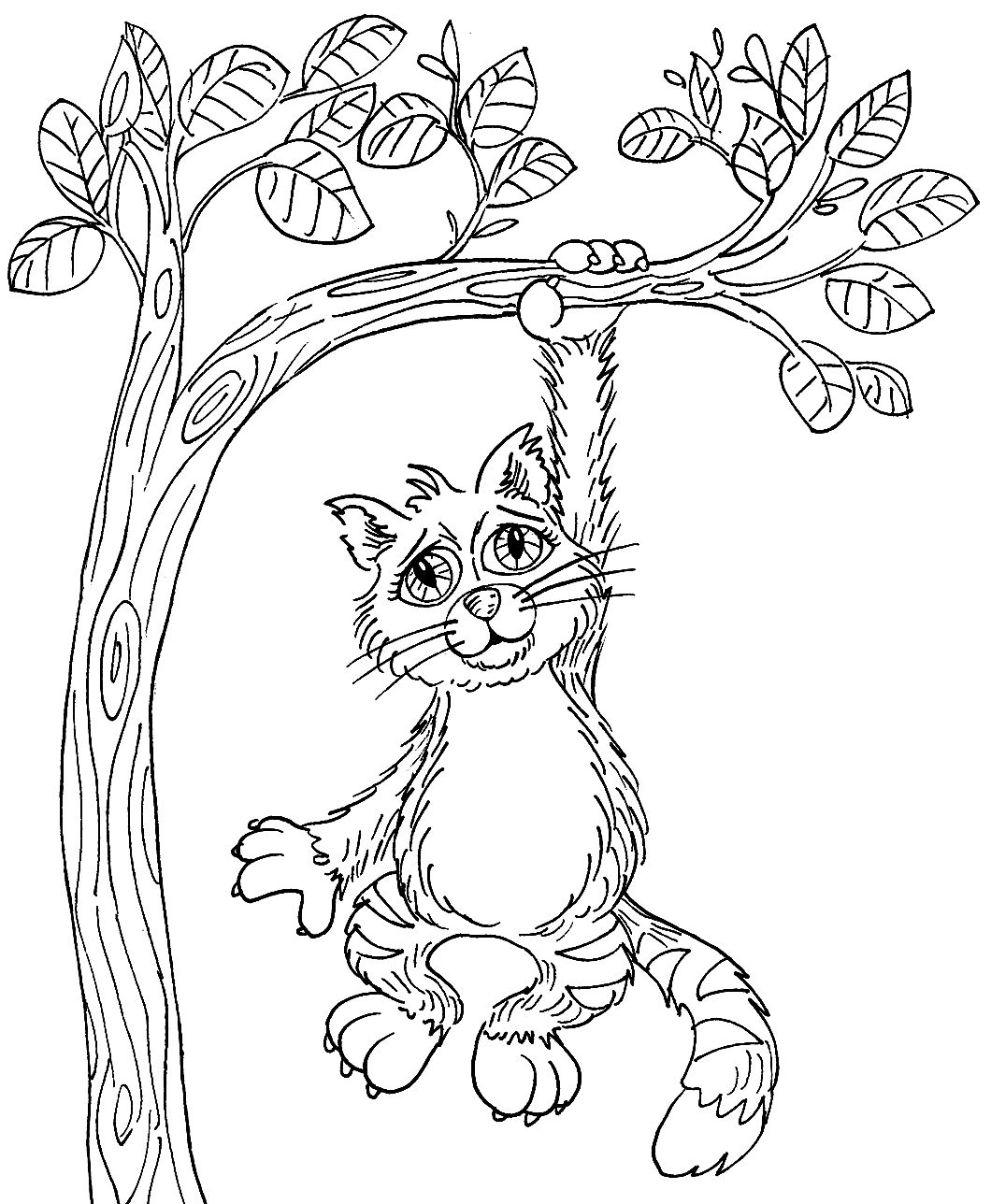 Hang In There Kitty F Cat Coloring Page Coloring Pages Coloring Books