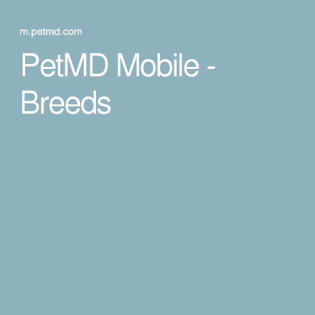 PetMD Mobile - Breeds