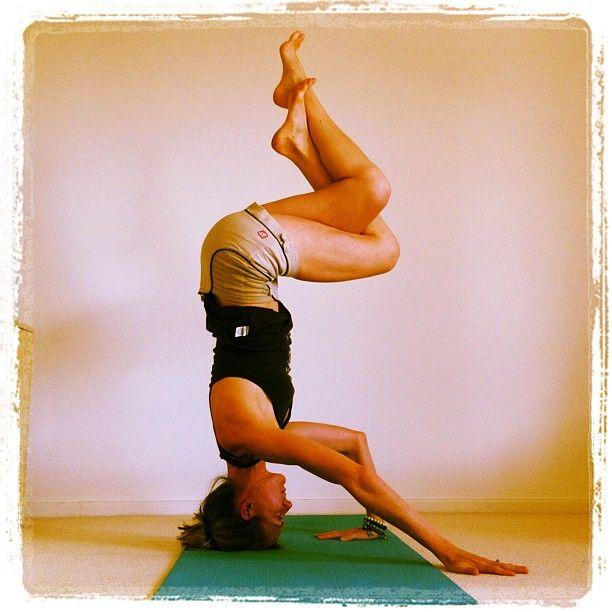 Sirsasana Headstand variation | Yoga poses, Yoga, Poses
