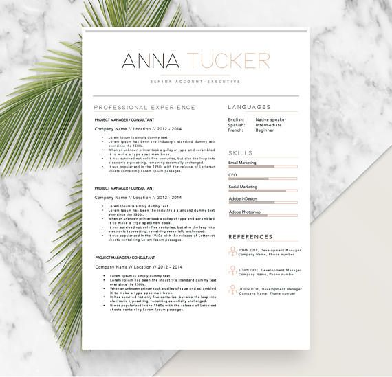 Professional Resume, Modern Resume, Modern CV Templates