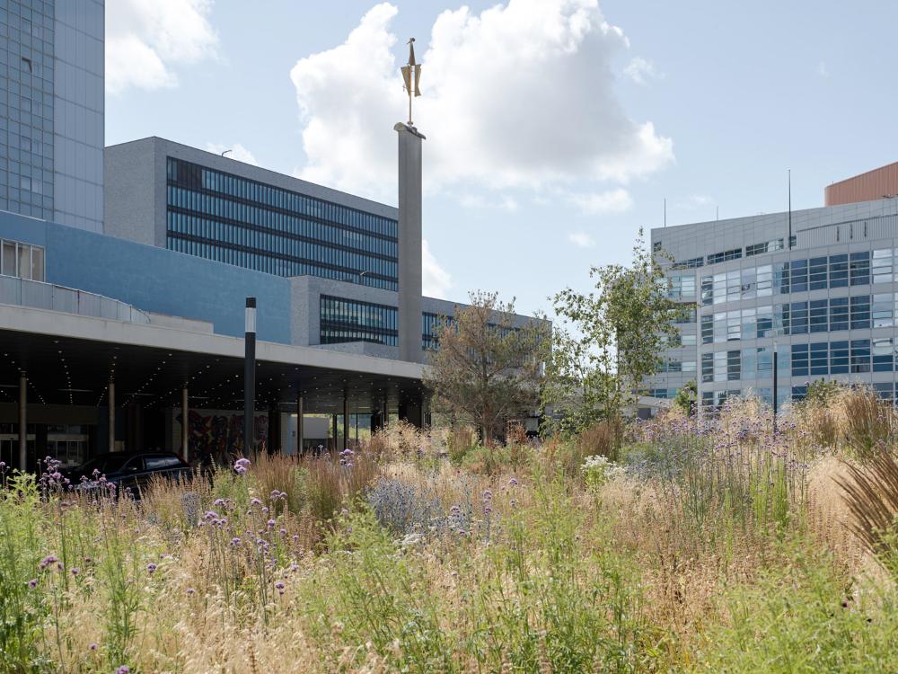 DS Landschapsarchitecten « Landscape Architecture Platform