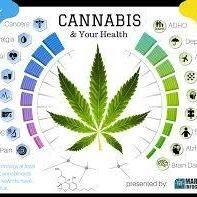 PUF_CF#DAPSTARS#highmerica #medicinalmarijuana #OIL #maryjane #cannabis #cannabiscommunity #highlife #ganja #ganjagirls #ganjagirl #420#PUF#WorldofDabs #WOD #Cannabis #Kief #Weed #Stonersbest #Oil