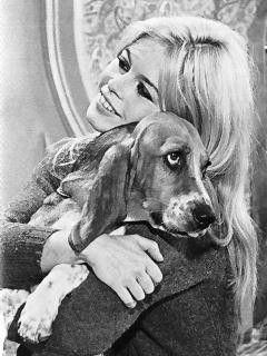 Brigitte bardot protectrice des animaux chien brigitte bardot pinterest - Maison brigitte bardot ...