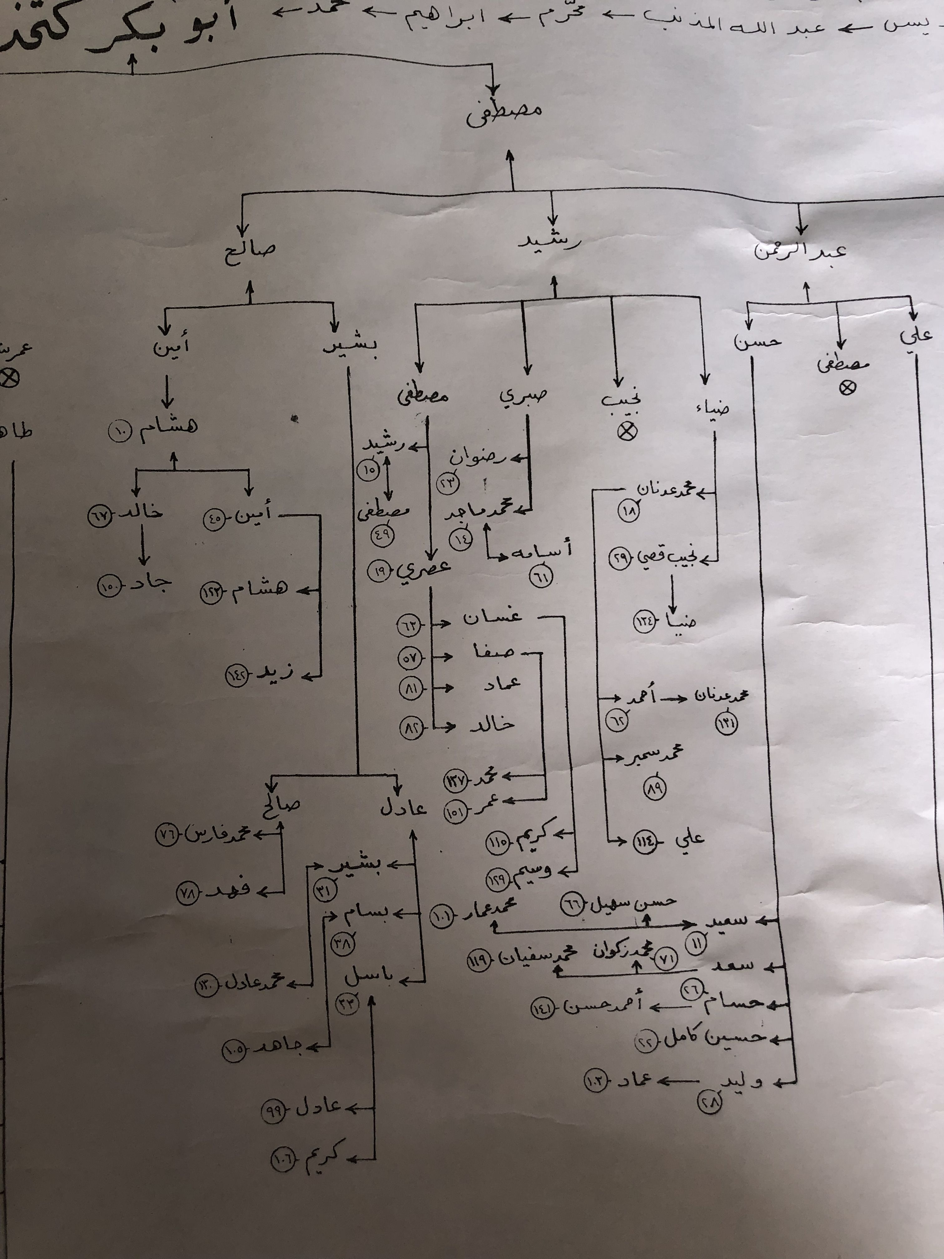 Family Tree Family History Aleppo Syria Sheet Music